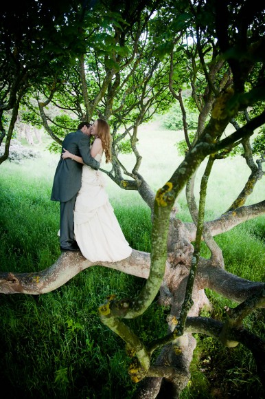 Bride and groom in old tree